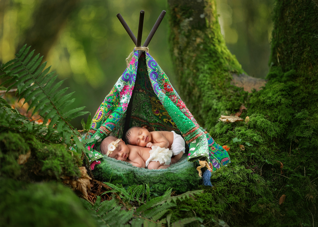 FOREST.TENT_1
