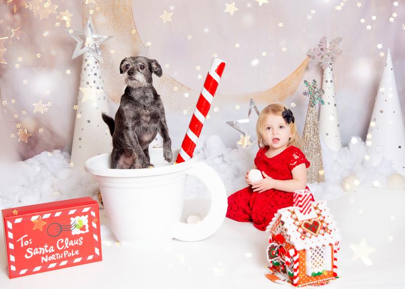 Christmas - Joanna Jensen PhotographyJOAN8906stars